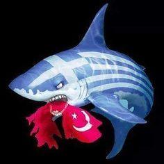 ΕΛΛΆΣ  Ν Greek Flag, Greek Beauty, Thessaloniki, Greek Islands, Countries Of The World, Coat Of Arms, Surrealism, History, Symbols