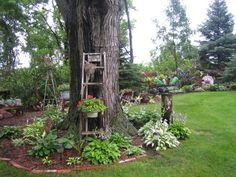 Garden Junk Ideas | An interesting garden, lots of junk!