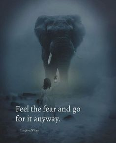 Feel the fear and go for it anyway.