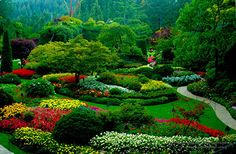 The Butchart Gardens, Vancouver Island, British Columbia - What I envision the Garden of Eden to look like.