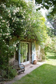 Jardin d'Igor et Tamara. Bushy plants on facade