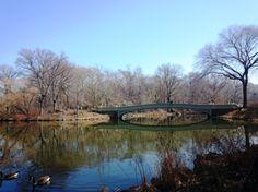 O Central Park - Nova Iorque -  é aquela área pública que fica linda em qualquer estação do ano!