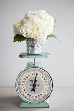 Vintage Turquoise Kitchen Scale. $64.00, via Etsy. I could buy it or still it from my mom :) @Natalie Wyatt