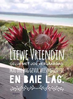 Happy Birthday Pictures, Happy Birthday Quotes, Happy Birthday Wishes, Birthday Greetings, Birthday Memes, Afrikaanse Quotes, Good Morning Inspirational Quotes, Happy Wishes, Happy B Day