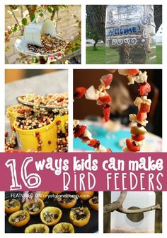 16 ways kids can make bird feeders