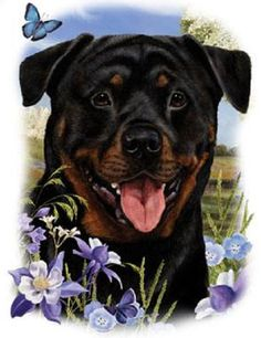 TSHIRT Rottweiler Dog  Floral Dog T Shirt  by AlwaysInStitchesCo, $12.50