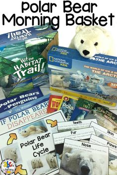 Are you looking for a morning basket idea for January? Try a Polar Bear Morning Basket! Your kids can learn about the parts of a polar bear that help it survive in the frigid Arctic temperatures. You can also teach your children about the polar bear's life cycle and how they change and adapt. There are so many fun activities that your kids are sure to love! Click on the picture to see what we included in our Polar Bear Morning Basket! #morningbasket #polarbears #homeschool #homeschooling