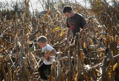 Don Edinger, of Forks Township (walks with son Ben Flannigan, 4, through the corn maze at the Raub Farm Market in Palmer Township on Sunday, during the Northampton County Open Gate Farm Tour. (Harry Fisher / THE MORNING…)