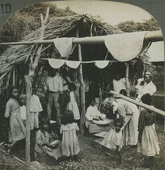 Caribes at Home, Preparing Cassava According to, St Vincent,1903, by The Caribbean Photo Archive