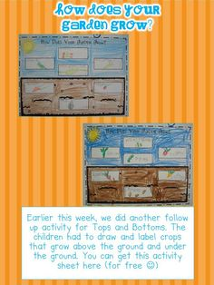 Mrs. Plants Press: Field Day Fun with book Tops and Bottoms