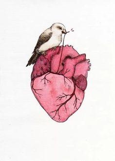 Human Heart, Watercolor Heart, Watercolor Tattoo, Bird Art, Sansa Stark, Sparrows, Anatomy Art, Heart Anatomy, Street Art