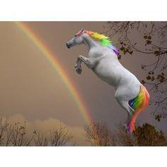 il cavallo dell'arcobaleno...