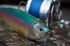 Shad for codfishing | Gummifisch zum Dorschangeln