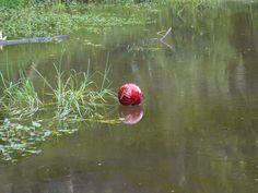 Balón al agua en el Parque del Río Neusa, Cundinamarca.