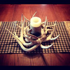 My deer antler decoration creation