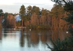 """Sherwood Forest Center Parcs, Village Centre over Lake  """"Beautiful"""" #CPFamilyBreaks"""