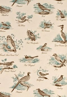 Bewick Birds wallpaper. WOuld be nice inside a closet or backing a bookcase.  Just the birds peeking out in these lovely colors.