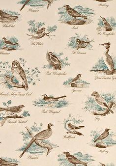 Bewick Birds wallpaper