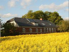 Høgsholtvej 186, 7100 Vejle - Drømmehuset i Vejle - 450kvm inkl. Bed and Breakfast