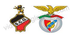 O Benfica jogou dia 7 de Abril de 2013 contra o Olhanense em jogo a contar para a 25ª jornada do campeonato português tendo ganho 2-0.do resumo do jogo com os golos de Salvio e Matic.