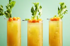 16 Brunch Cocktails You Need to Know