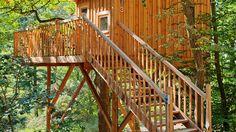 Wipfelglück Treehouse Hotels- Germany