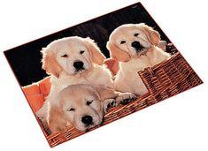 "Bureaulegger ""3 hondjes"" (5810)   Buro onderlegger   Schoolspullen365 wordt schoolosaurus.nl Labrador Retriever, Dogs, Animals, Labrador Retrievers, Animales, Animaux, Pet Dogs, Doggies, Animal"