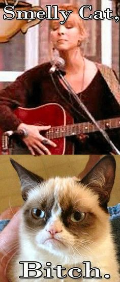 Smelly Cat...
