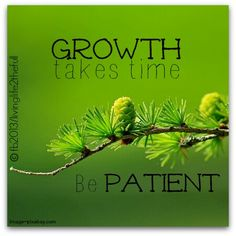 Learning patience:)