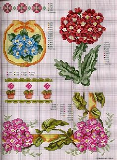 Gallery.ru / Фото #106 - Ботаника-цветы - irislena