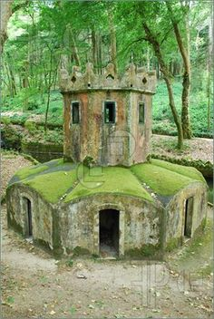 Mossy House For Ducks In The Forrest