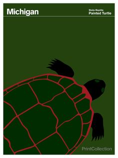 Michigan Painted Turtle by Julian Montague