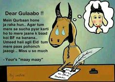 wish you happy EID 2018 Funny Dp, Super Funny Memes, Cute Funny Quotes, Funny Love, Funny Relatable Memes, Hilarious, Crazy Funny, Funny Eid Mubarak, Eid Mubarak Quotes
