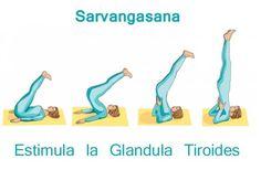 Sarvagasana. La Vela. Para equilibrar el Hipotiroidismo.