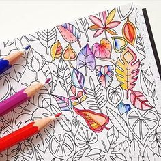 Adultcoloringbook Adultcoloring Leaf Fall Colors Colours Stifte Pens Johannabasford