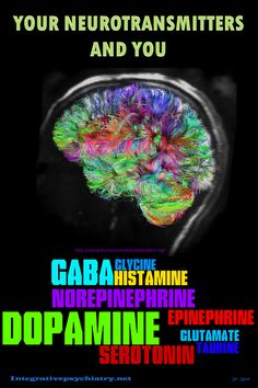 Did you know that everything that you do is connected to neurotransmitters? Learn how your neurotransmitters and you are connected here. Chemical Imbalance, Test Anxiety, Endocannabinoid System, Brain Science, Neuroplasticity, Brain Health, Mental Health, Anatomy And Physiology, Pharmacology