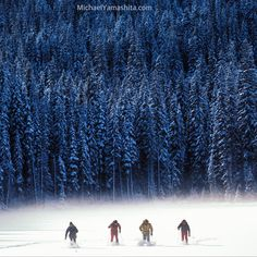 Going cross country #hokkaido #japan #xcountryskiing #crosscountry #winter #ski @thephotosociety @natgeocreative @natgeo by yamashitaphoto