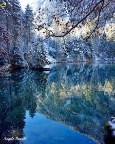 lago blausee suiça Mother Earth, Mother Nature, Heaven On Earth, Science And Nature, Natural World, Switzerland, Beautiful Places, Scenery, Explore