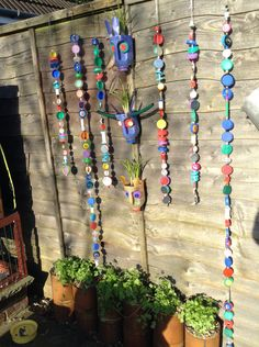 Upcycled. My boring plain fence is now brightened up! With plastic bottle animal flower pots, bottle top wind rattlers and recycled big beans tin towers planted up with coriander and flat leaved parsley. Now a joy to look at!