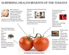Best Diet Foods & Drinks : benefits of tomatoes… Tomato Benefits, Health Benefits Of Tomatoes, Fruit Benefits, Nutrition Tips, Health And Nutrition, Health And Wellness, Healthy Tips, Healthy Recipes, Healthy Foods