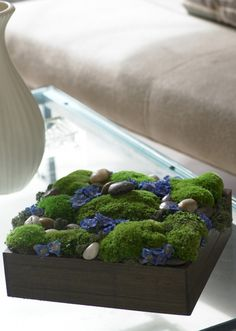 Preserved moss garden dotted with preserved delphinium blossoms and river rocks. — Barbra Scott
