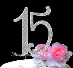 Deluxe Quinceanera 15 birthday cake topper in rhinestone silver bling crystals birthday cake Bling Cases USA 15th Birthday Cakes, 15 Birthday, Birthday Cake Toppers, Birthday Parties, Party Themes, Party Ideas, Quinceanera Party, Beautiful Fonts, Chocolate Covered Strawberries
