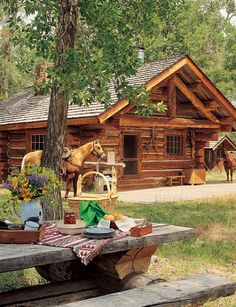 Cabin with everything I need