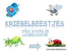 Kriebelbeestjes digibordlessen -  welk woord is langer digibordonderbouw.nl