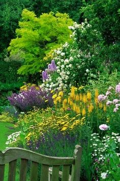 I can't resist a beautiful border to repin. This boarder in my color scheme makes me happy and envious that some great gardener has achieved this.