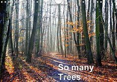 So manyTrees (Wall Calendar 2015 DIN A4 Landscape): Trees , they are so beautiful! (Monthly calendar, 14 pages) (Calvendo Nature) von Ula Redl http://www.amazon.de/dp/132504086X/ref=cm_sw_r_pi_dp_-qFKub1RJAV13