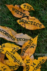 The Write Practice: 14 Prompts. For writers looking for practical inspiration. #free