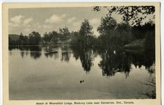 Vintage Postcard (RPPC) - Beach at Moorefield Lodge. Boskung Lake in Carnarvon, Ontario.