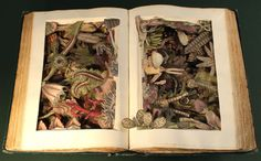 kerry miller's intricately carved 3D artworks from old books