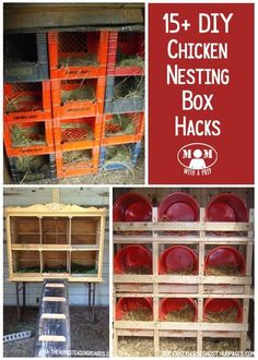 15+ Chicken Nesting Box Hacks @ Momwithaprep.com
